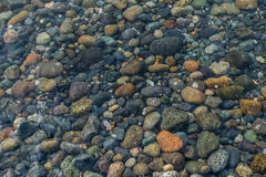 Shallows Rocks. A view of rocks beneath saltwater in the shallows Royalty Free Stock Images