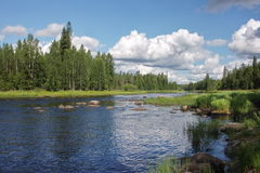 Shallows on Suna river, Karelia, Russia. Shallows on Suna river in Karelia, Russia Royalty Free Stock Photo