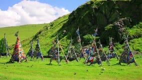 Shaman Adak Tree, prayer's flag stock video