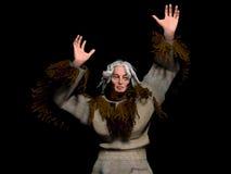 The shaman. 3D model of the Yakut shaman Royalty Free Stock Photos