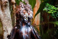 Shaman maya en la demostración de Xcaret en México foto de archivo libre de regalías
