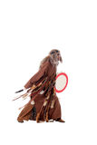 Shaman with tambourine, isolated on white Stock Image