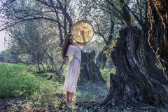 Shaman woman drumming in the forest Royalty Free Stock Images