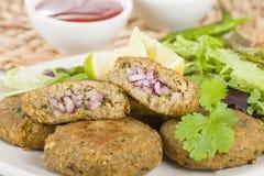 Shami Kebab immagine stock libera da diritti