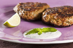 Shami kebabs Royalty Free Stock Photos