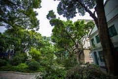 Shamian parkerar historiska byggnader Royaltyfri Bild