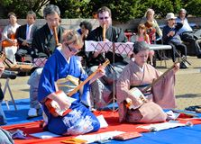 Shamisen artists Stock Image
