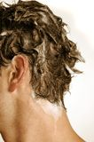 Shampoo. Male scalp and hair lathered with shampoo Royalty Free Stock Image