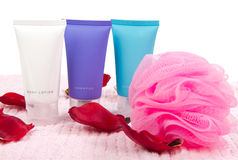 Shampoo and body lotion Stock Images