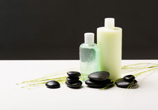 Shampoo bottle, massage stones and green plant Stock Photos