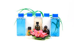 Shampoo bottles and oils Stock Images