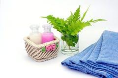 Shampoo en Douchegel op witte achtergrond Stock Afbeeldingen