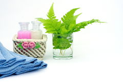 Shampoo en Douchegel op witte achtergrond Stock Fotografie