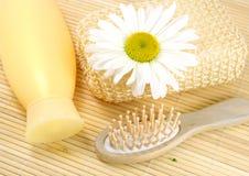 Shampoo en haarborstel Royalty-vrije Stock Foto's