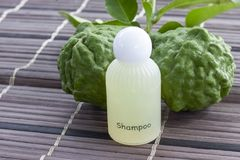 Shampoo made from bergamot. Shampoo made from bergamot helps inhibit hair loss, build strong hair roots, say goodbye to dandruff and itching royalty free stock photos