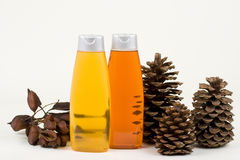 Shampoo With Pine Cones And Seeds In Pads Stock Photo