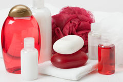 Shampoo, Soap Bar And Liquid. Toiletries, Spa Kit Stock Images