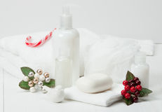 Shampoo, Soap Bar And Liquid. Toiletries, Spa Kit Stock Photo