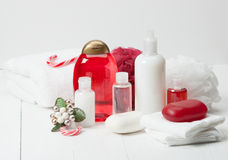 Shampoo, Soap Bar And Liquid. Toiletries, Spa Kit Royalty Free Stock Images