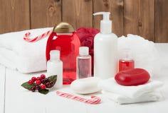 Shampoo, Stück Seife und Flüssigkeit Toilettenartikel, Badekurort-Ausrüstung Lizenzfreie Stockfotografie