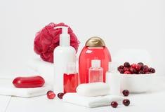 Shampoo, Zeepbar en Vloeistof Toiletries, Kuuroorduitrusting stock afbeelding