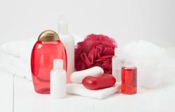 Shampooing, barre de savon et liquide Articles de toilette, kit de station thermale Image stock