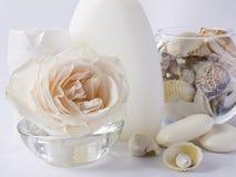 Shampooing, gel de douche, essuie-main Image libre de droits