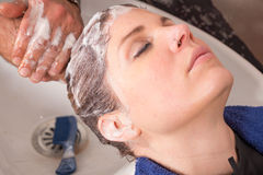 Shampooing Royalty Free Stock Images