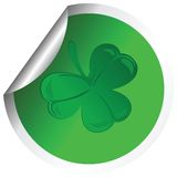Shamrock Royalty Free Stock Photos