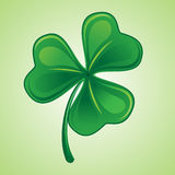 Shamrock 3 Stock Photos
