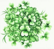 Shamrock. Composition of green shamrock and grass. Original watercolor painting Royalty Free Stock Photos