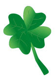 Shamrock as a symbol for luck. And happiness Royalty Free Stock Photo