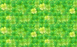 Shamrock background Stock Photos