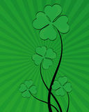 Shamrock Background. Green shamrock background vector illustration Royalty Free Stock Images
