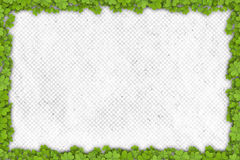 Shamrock border on paper with place for your text Stock Images