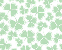 Shamrock / clover background stock image