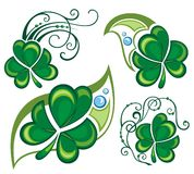 Shamrock clover design Royalty Free Stock Images
