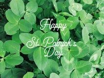 Shamrock clover leaves, st Patricks day card. Shamrock clover leaves, st Patricks day greeting card stock photos