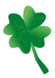Shamrock como um símbolo para a sorte Foto de Stock Royalty Free