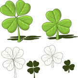 Shamrock designs, vector illustrations Royalty Free Stock Photo