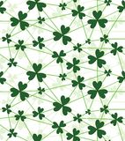 Shamrock flower background. Stock Image