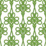 Shamrock flower background. Royalty Free Stock Images