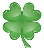 Shamrock or Four Leaf Clover Stock Photo
