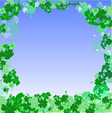 Shamrock Frame Royalty Free Stock Photography