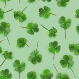 St. Patricks Shamrock Seamless Pattern Isolated on Green Background. St` Patrick` Shamrock Green on Green Background. Irish St` Patrick`s Day Seamless Pattern Stock Photography