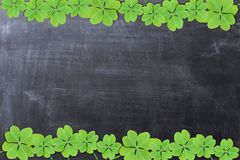 Shamrock or green clover leaves on blackboard. As background stock photography
