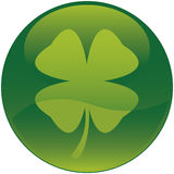 Shamrock icon ( Four leaf clover ). Glossy style green shamrock icon. Four leaf clover Royalty Free Stock Photo