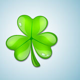 Shamrock leave background Stock Photos