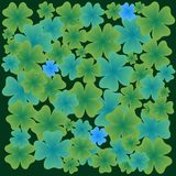 Shamrock leaves pattern Royalty Free Stock Photography