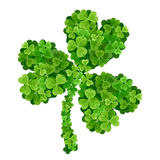 Shamrock made of green shamrocks. Shamrock symbol made of small green shamrock leaves Royalty Free Stock Photos